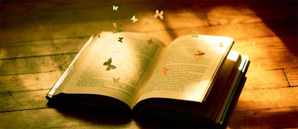 Bestseller bøger - Find de bedste bøger på nettet